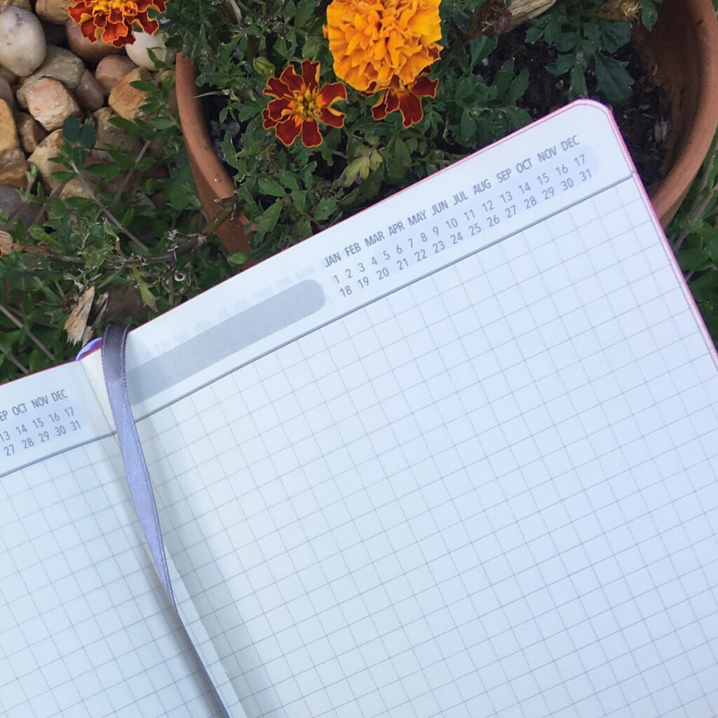 I fell in love with this grid journal with rounded edges.